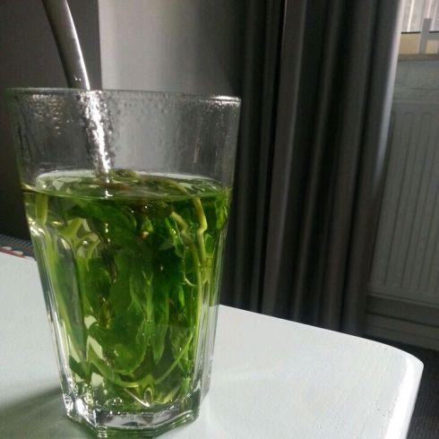 Tea Moments Juni