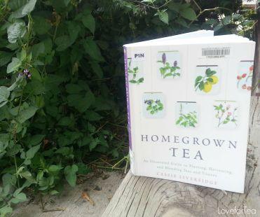 homegrown tea voor het zelf maken van thee